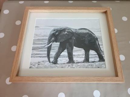 elephants, Epiphany Elephant Home on elephant art, elephant furniture, elephant bathroom, cat design home, elephant logo design, elephant graphic design,